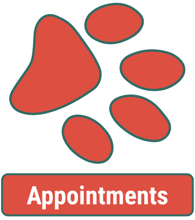 Animal Hospital Appointments